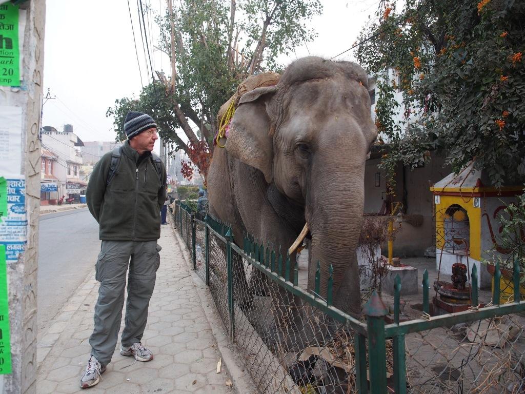 Nepal.Jf.Elephant.2016.1 - 1
